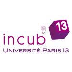 Incub'13